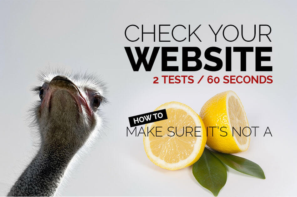 Check your website to make sure its not a lemon. SEO Canonical Issues