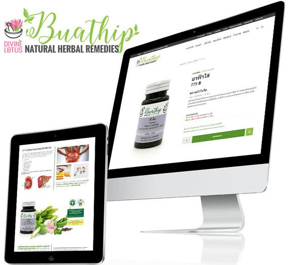 Buathip e-commerce website design